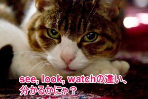 ニャ先生 see, look, watchの違い