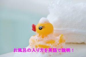 ひよこちゃんとお風呂